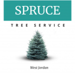 Spruce Tree Service Logo