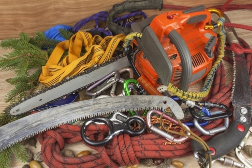 Close up picture of the climbing gear used for safety when cutting down trees in West Jordan, UT